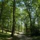 Afavorir la biodiversitat i protegir l'ecosistema al càmping a Arieja