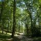 Favoriser la biodiversité et préserver l'écosystème au camping en Ariège