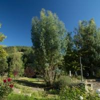 Benvingut al càmping the greenhouse ariege occitanie