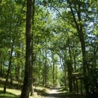 10 Hektar Natur pur für Ihren Natururlaub auf dem Campingplatz in Ariege, Okzitanien, Frankreich