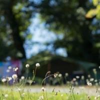 Große Zeltplätze für Camper in Ariege, Okzitanien, Frankreich