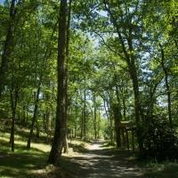 10 hectares de pleine nature en vacances vertes au camping en Ariège, Occitanie