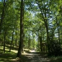 10 hectaren ongerepte natuur voor een groene vakantie op de camping in Zuid-Frankrijk