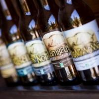 Ambachtelijke, lokale biertjes op de eco-camping in Ariège