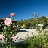 Omgeving van de receptie op de groene camping in de regio Occitanie