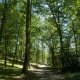 Unterstützung der Biodiversität und Erhaltung des Ökosystems auf dem Campingplatz in Okzitanien, Frankreich